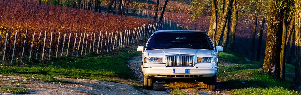 Iris-Limousine-10112015-4_banner