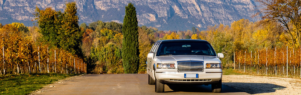 Iris-Limousine-10112015-_banner
