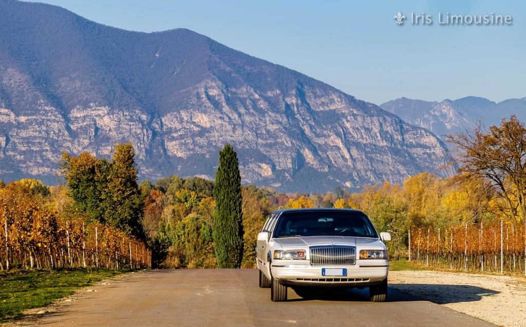 Iris Limousine - Lincoln Town Car Vintage Limousine